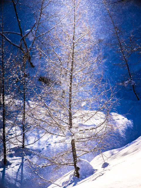 Diamond Dust And Sun Pillar Biei Hokkaido Japan Snow Ice Pinterest Hokkaido Japan