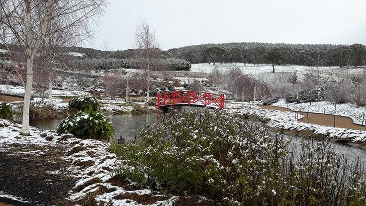 Snow at Mayfield Garden