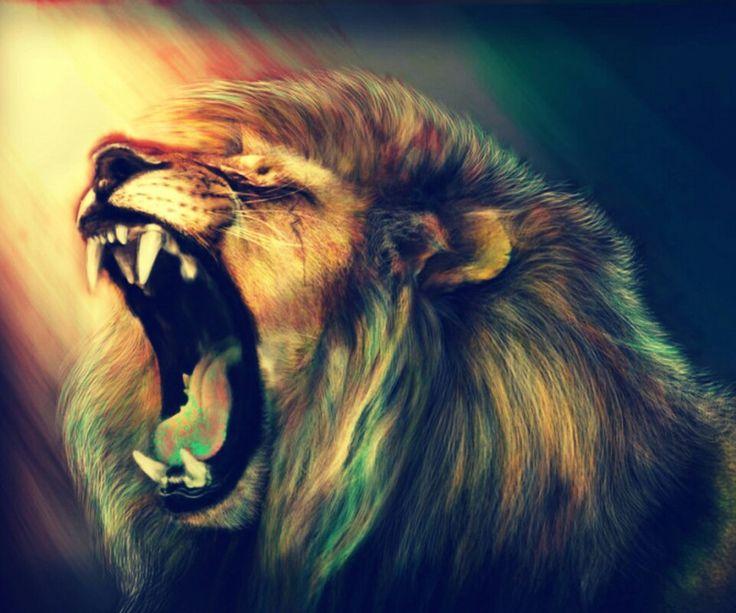 Roar of lion
