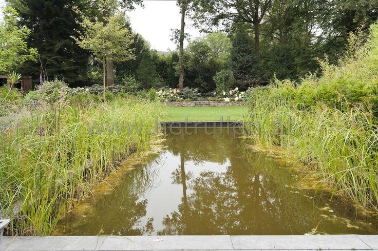 Tuinaanleg Eindhoven Nuenen natuurlijke vijver met gazon