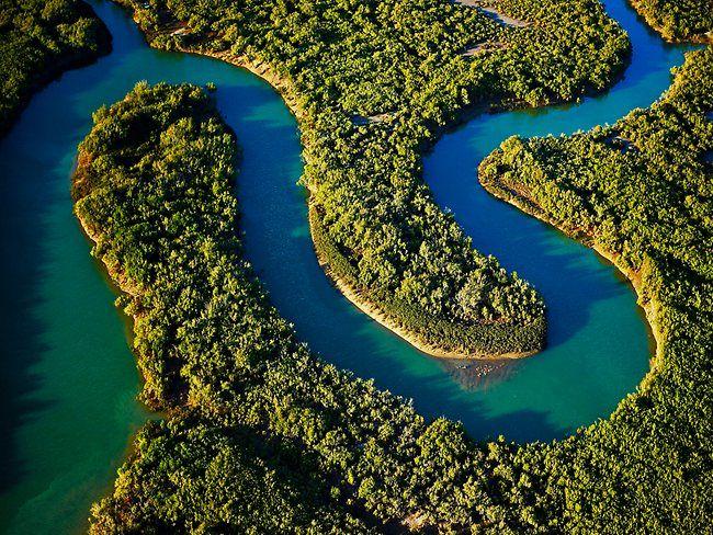 Waterways snake through lush mangroves in the Pilbara, Western Australia.