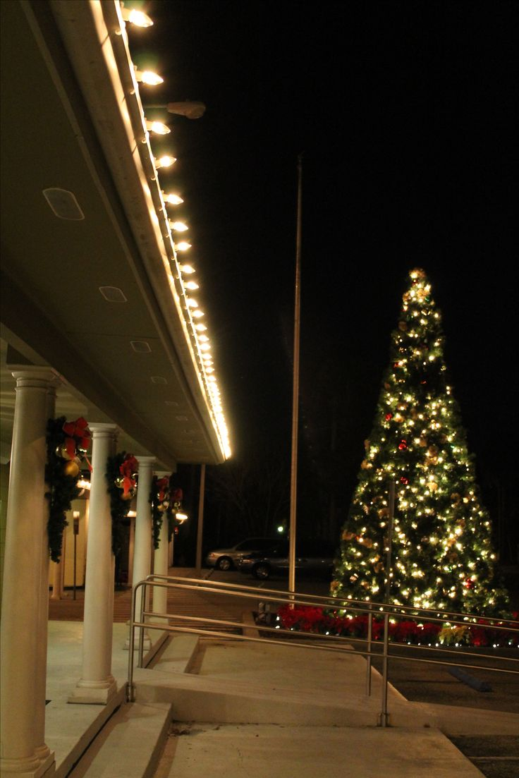Christmas lights as decoration year round - Some Businesses Have Us Do Installation For Christmas Decorations But Decide It Is A Great Idea For Outdoor Decorations Year Round