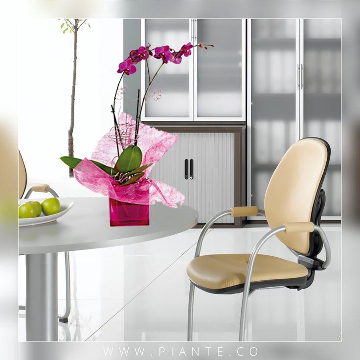 #Piante te ofrece las variedades más exóticas y la mejor calidad de Orquídeas Phalaepnosis en todo Colombia. Pregunta por nuestros regalos corporativos. -  http://piante.co/ - #Flores #Premium #Decoración #IdeasDeRegalos #Colombia #OrquídeasDeColombia #ColombianOrchids #Regalos #RegalosCorporativos