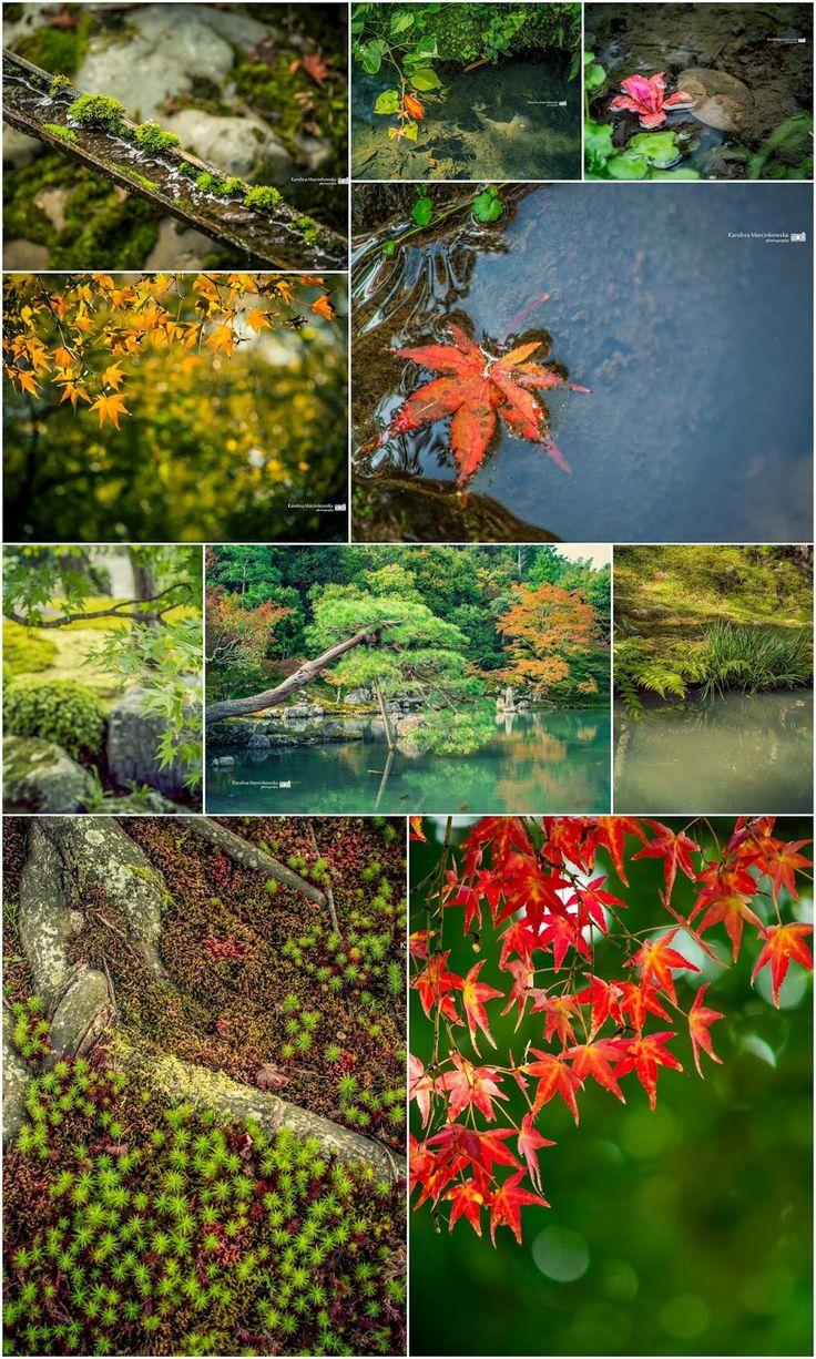Autumn in Arashiyama - Kyoto - Japan