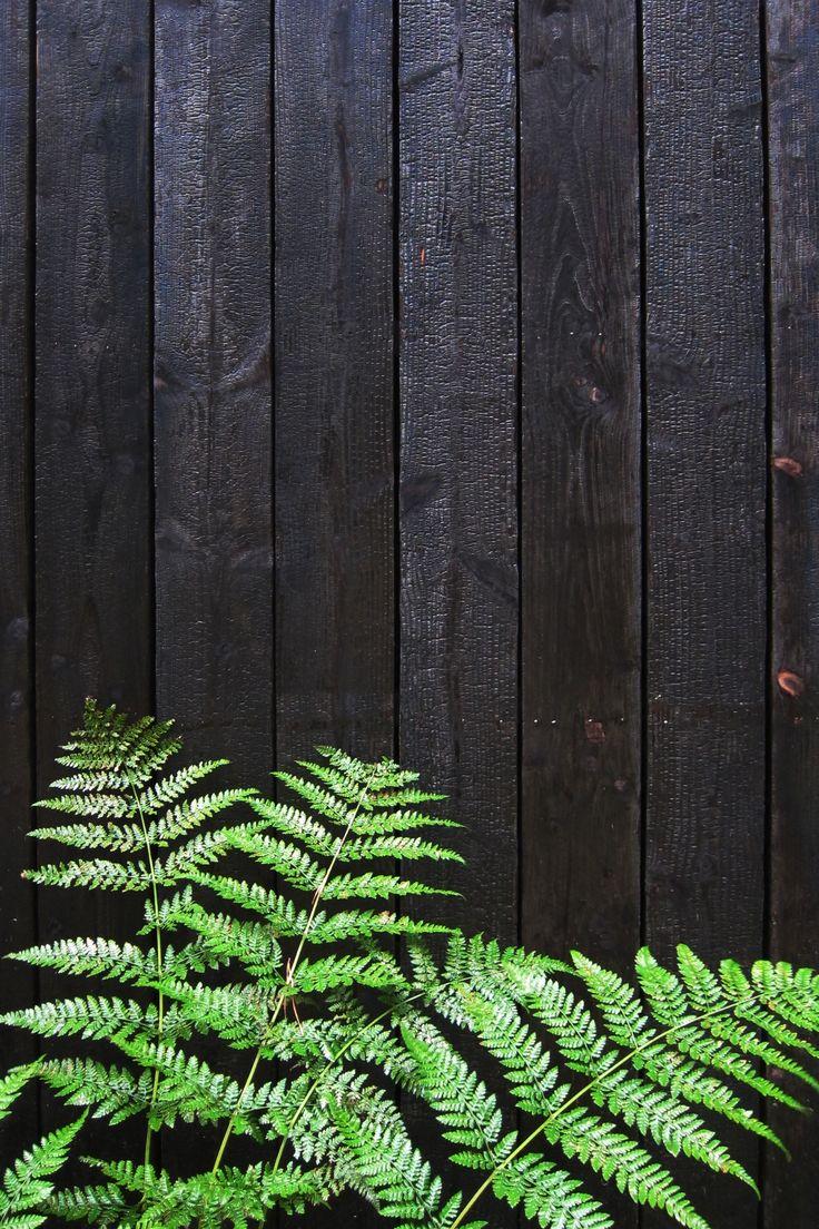 Wooden picket fence transparent backgroundgarden and gardening - Black Wooden Cladding Huize Monnikenheide 51n4e Photo By Dorothee Dubois