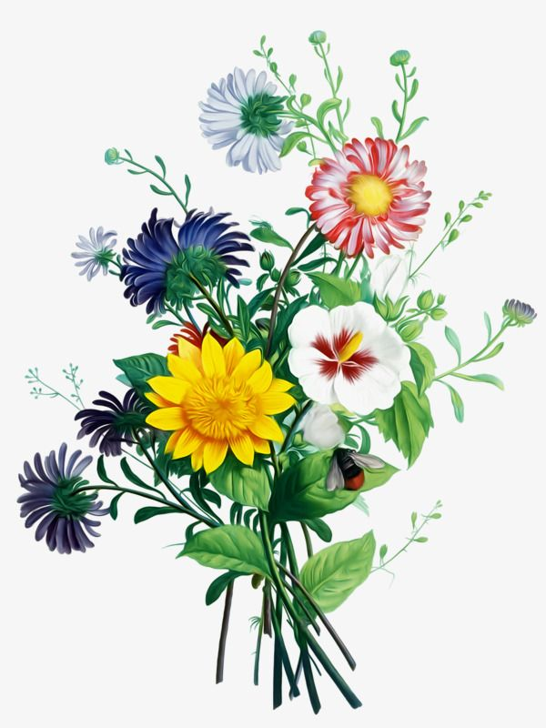 Flower Bouquet Flower Clipart Bunch Flower Arrangement Png And Vector With Transparent Background For Free Download Botanical Flowers Print Flower Bouquet Painting Flower Clipart