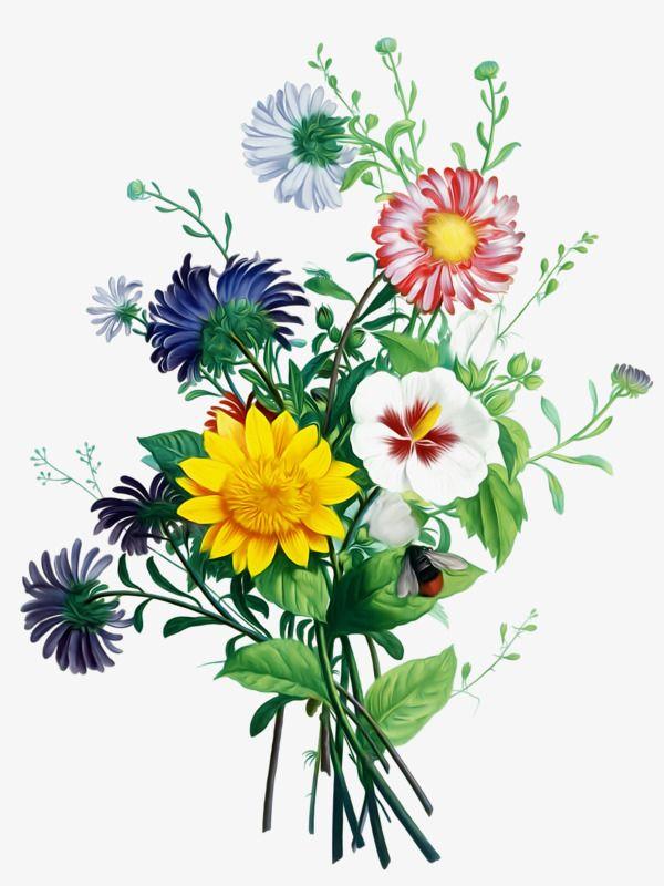 Flower Arrangement Png : flower, arrangement, Flower, Bouquet,, Clipart,, Bunch,, Arrangement, Vector, Transparent, Background, Download, Botanical, Flowers, Print,, Bouquet, Painting,, Clipart