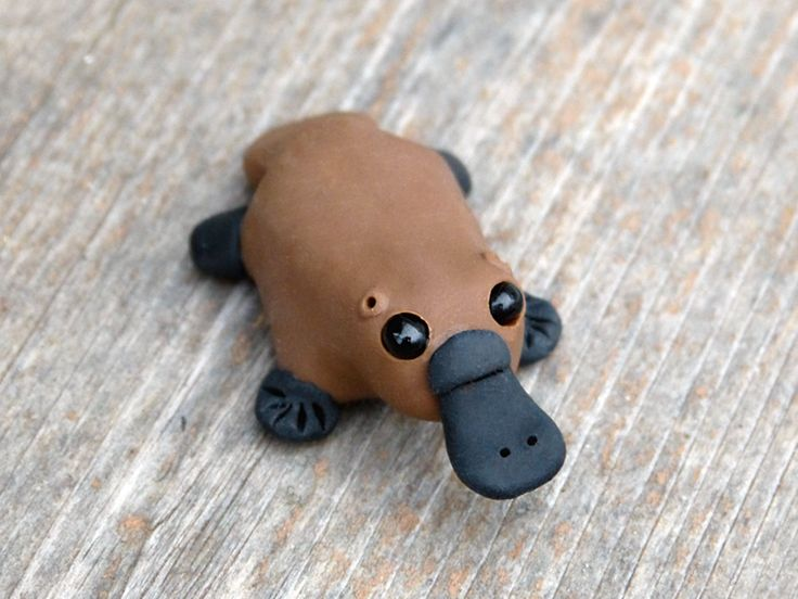 Tiny platypus  Handmade miniature polymer clay by AnimalitoClay, $20.00