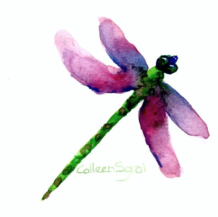 Dragonfly Watercolor Prints | Watercolor Dragonfly | Art & Then Some