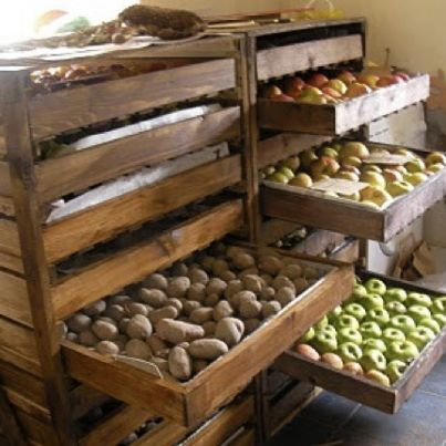 """Storage for garden produce. Would be nice in a root cellar.  Plans located at: http://ana-white.com/2012/06/plans/food-storage-shelf  (I made a rack similar to this, and I covered top, bottom, back and sides (all except the front of course) with window screening to keep the bugs out. The front has a screen """"door"""" with self-closing hinges that opens to slide the racks out . Works like a charm, and easy to clean.)"""