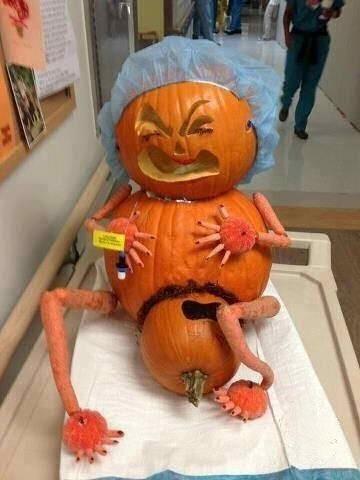 funniest pumpkin picture I've seen!