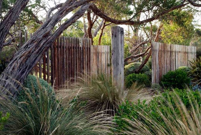 dry garden with grasses, clipped shrubs, windswept trees, open wood fence - wabisabi, by Fiona Brockhoff Design, Victoria, Australia - lovely fence - makes one feel like staying