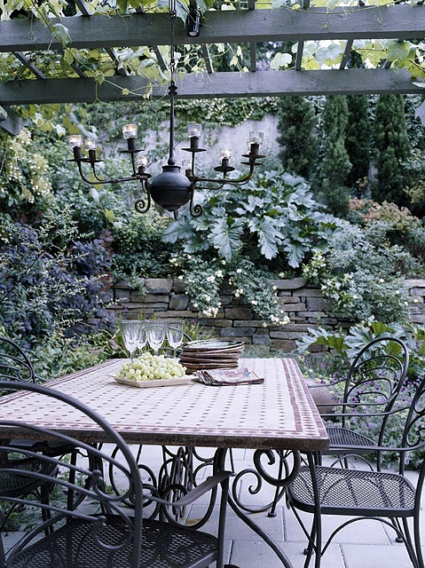 so nice! love the retaining wall in the background and the ladder as a trellis!