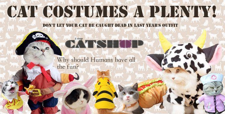 Trick or Catnip! https://www.1stopcatshop.com/collections/cat-costumes