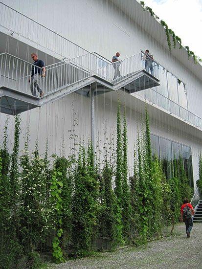 Fabulous vertical garden.