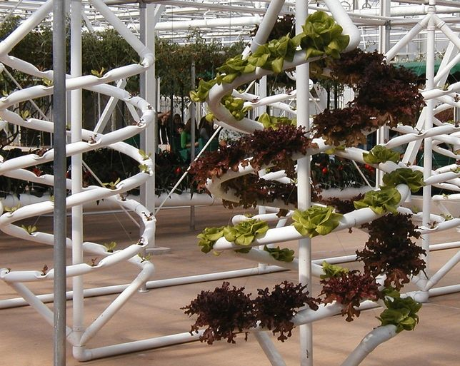 hydroponics how it works homework Learn all there is to know about the different types of hydroponic systems  this  type of system works very well because the roots of a plant absorb more oxygen.