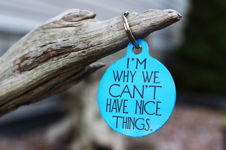 Funny Pet Tags, Dog ID,Im why we can't have nice things,Personalized Pet tag, ID tag, Dog tag,USA made, Michigan, Blue Fox Gifts, PET_107 by BlueFoxGifts on Etsy https://www.etsy.com/listing/244606192/funny-pet-tags-dog-idim-why-we-cant-have