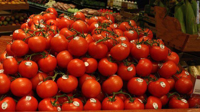 傷んだトマトや虫食いトマト、ケチャップなどの製造工程で出る皮や種。米フロリダ州ではそうしたトマト関連の廃棄物が年間約40万トンに上る。埋め立てれば危険なメタンガスが発生する恐れがあり、排水に入り込む可能性もある。  そうしたトマト廃棄物から発電する技術を米サウスダコタ州の大学の研究チームが開発し、...