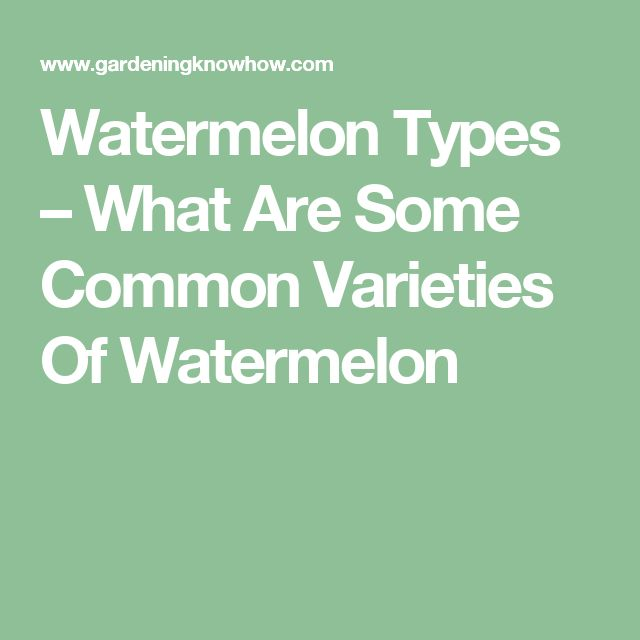 Watermelon Types – What Are Some Common Varieties Of Watermelon