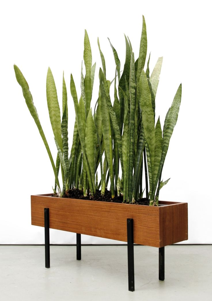 Anonymous; Teak and Enameled Metal Planter, c1960.