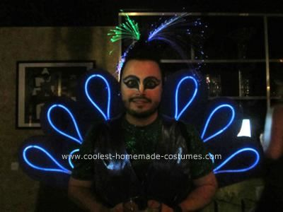 Homemade Peacock DIY Adult Costume Idea: For Halloween 2010, my husband and I were determined to be something that lit up. After throwing out the obvious Christmas tree ideas, we settled on a