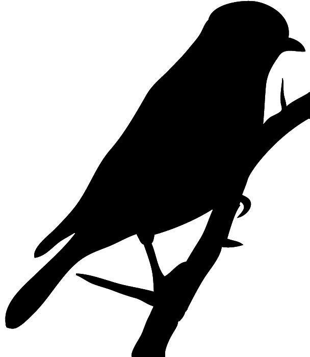 Dynamic image for printable hawk silhouette for window