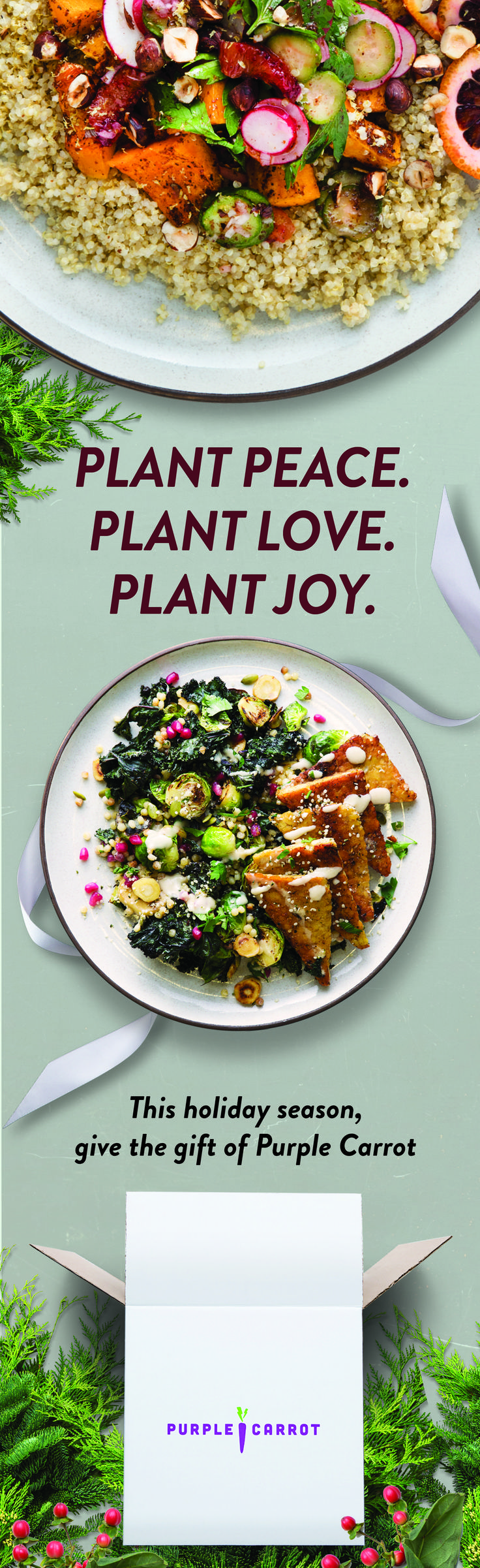 Give healthy vegan meals. Each Purple Carrot box is packed full of delicious plant-based recipes and fresh ingredients.