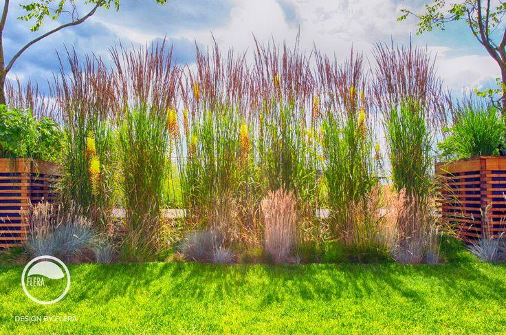 #landcape #architecture #garden #rooftop #meadow #flowerpot