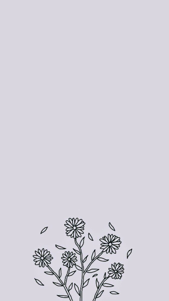 Pin By Julia Margulies On Wallpapers Simple Iphone Wallpaper Iphone Background Wallpaper Flower Phone Wallpaper