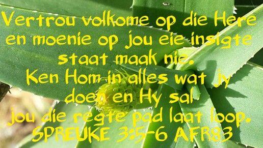 Spreuke 3