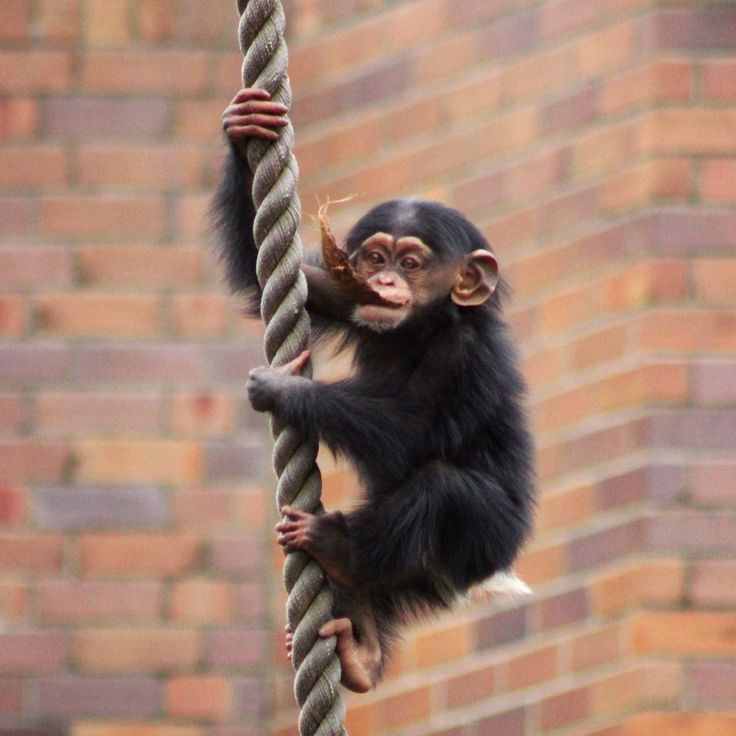 Hang in there, the weekend is almost here!