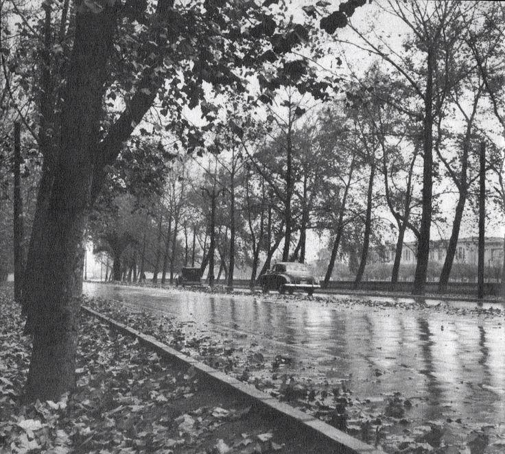 Parque Forestal, Santiago, Chile (1956) Picture by @FotosHistóricasDeChile