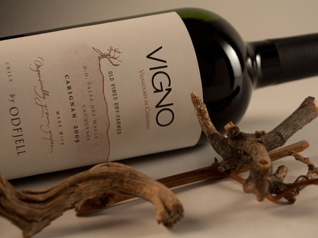 Vigno, carignan by Odfjell Vineyards for Viñadores de Carignan, Chile. Packaging design by CPD estudio.
