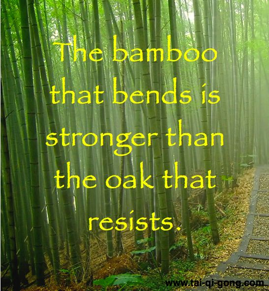 Here's a Japanese proverb to keep you motivated in your Qigong practice.   For your daily dose of interesting qigong facts, quotes and information, LIKE or FOLLOW us or visit www.tai-qi-gong.com.