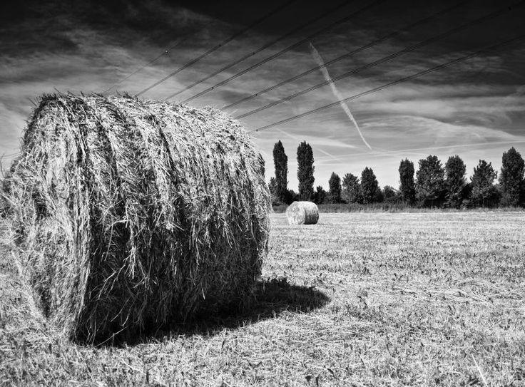 Countryside -