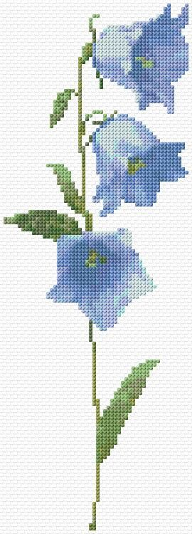 Blue Bell Flowers Free Cross Stitch Pattern