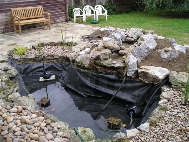 Best 25 Pond cleaning ideas on Pinterest Pond of fish Pond