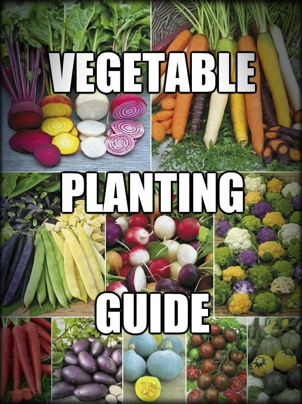 Vegetable planting guide from grow food not lawns for Garden planning guide
