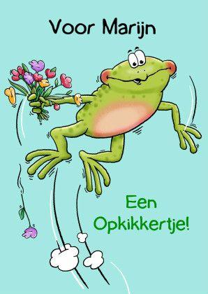 Beterschapskaart met opkikkertje en bosje bloemen, verkrijgbaar bij #kaartje2go voor €1,89