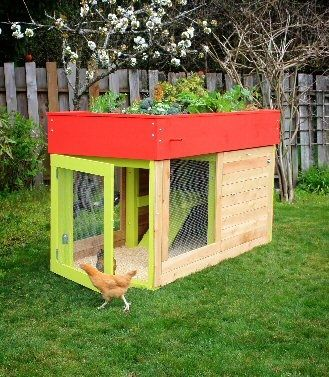 Chicken coop with a green roof!