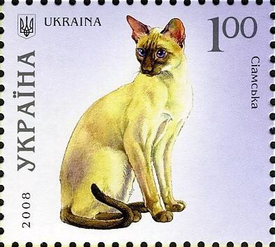 Siamese cat postage stamp from the Ukraine
