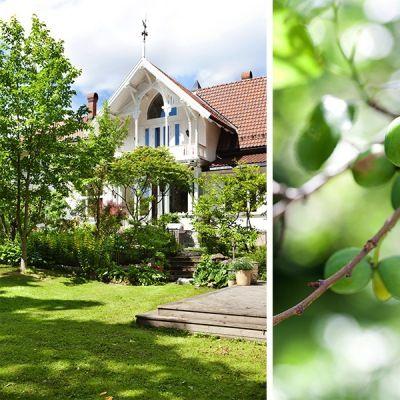 Noen hus har alt. Historisk sus, moderne komfort, sentral beliggenhet og fantastisk hage. Bli med inn i Villa Sommerro!