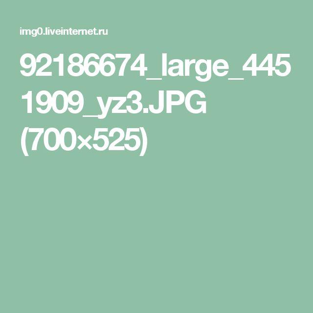 92186674_large_4451909_yz3.JPG (700×525)