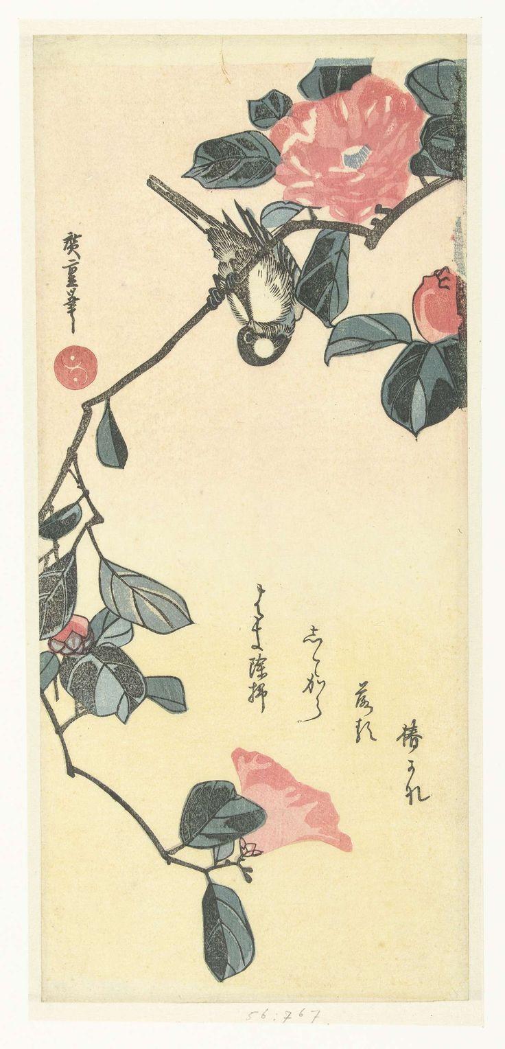 Hiroshige (I) , Utagawa | Vogel en camelia, Hiroshige (I) , Utagawa, 1850 - 1920 | Vogel, ondersteboven, op tak van bloeiende camelia; tegen gele achtergrond waarop gedicht.