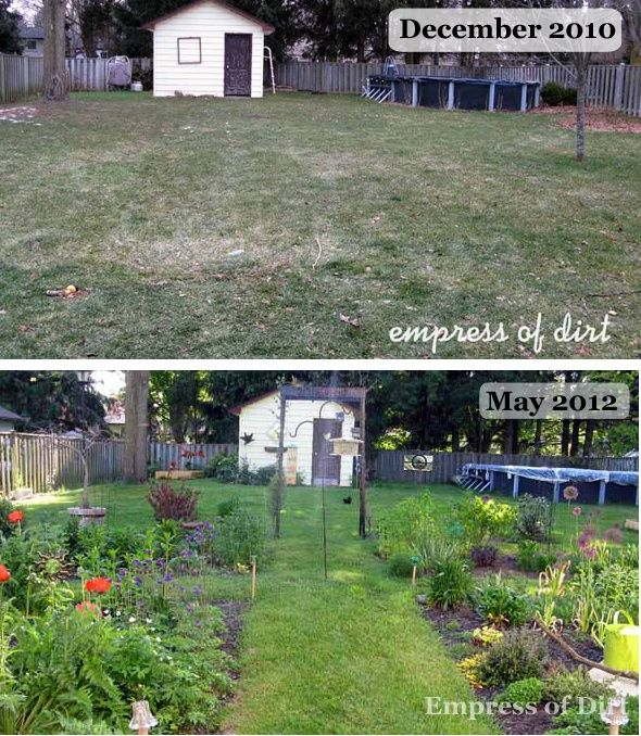 Starting A Garden From Scratch Showing The The Transformation From A Bare  Grass Lawn To Many
