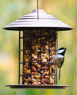 Wild Birds Unlimited: How to get rid of weeds under the bird feeder without using poisons