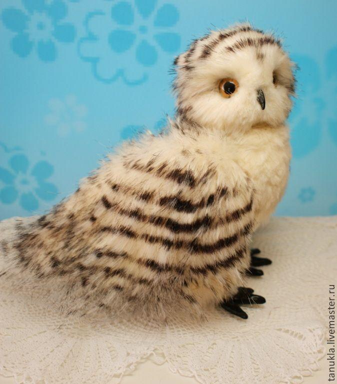 Купить Василиса, полярная сова. - белый, сова, полярная сова, подарок, Гарри Поттер