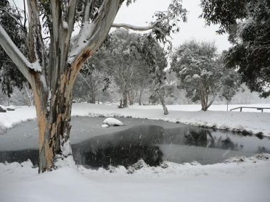 frozen duck ponds thredbo