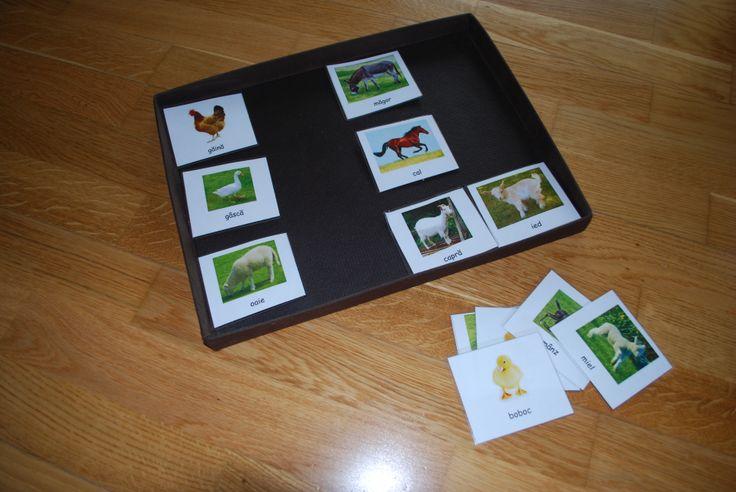 Matching children to parent - farm animals