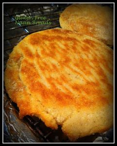 naan breads made with rice and tapioca flour-002